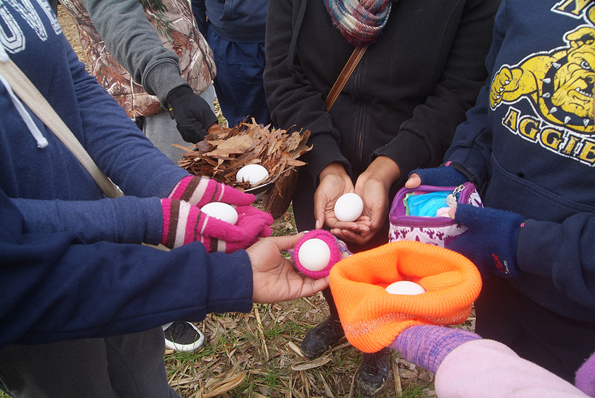 A credit to great design integrity by transporting eggs safely through The Outdoor Adventure Trail Game at Xtreeme Challenge